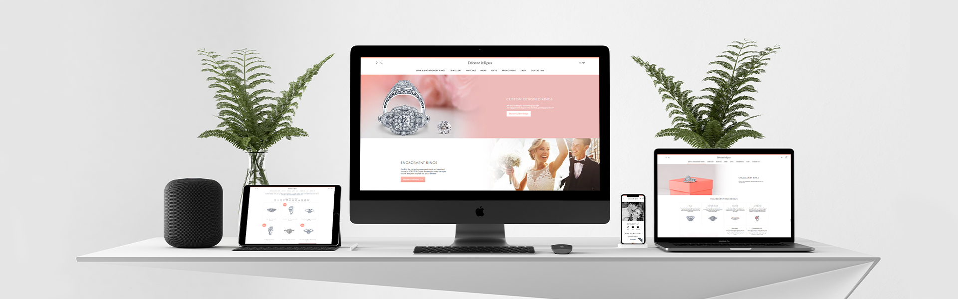 Born Intelligence Deonne Le Roux Website Redesign and Development