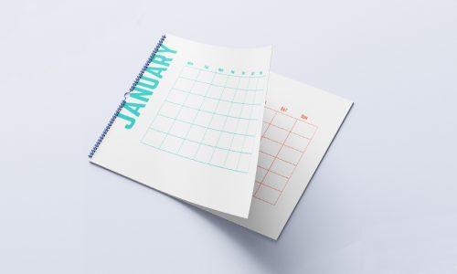 Born-Intelligence-Free-Printable-Calendar-4